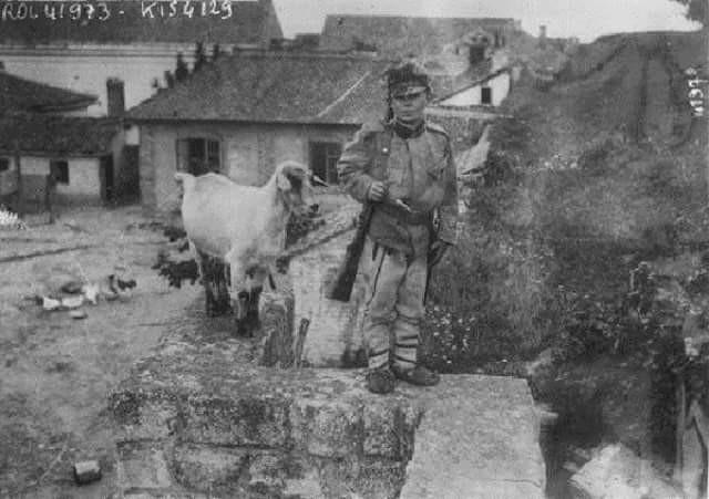 Photo of Српски ЈУНАК од 12 година: Драгољуб Јеличић, НАЈМЛАЂИ ВОЈНИК у Првом светском рату