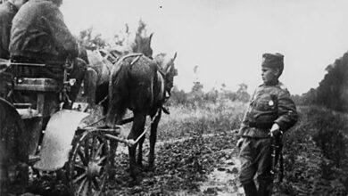 Photo of Најмлађи српски војник Момчило Гаврић: Да је био француски војник, данас би имао…