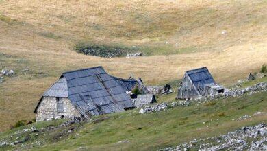 Photo of ВОЈИСЛАВ МИСТОВИЋ: Како одговорити на крађу наше историје у Црној Гори?